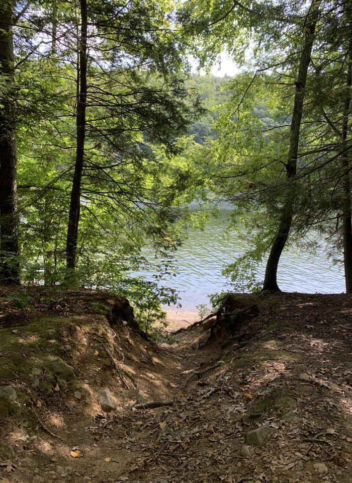 Field Trip: Paugussett State Forest